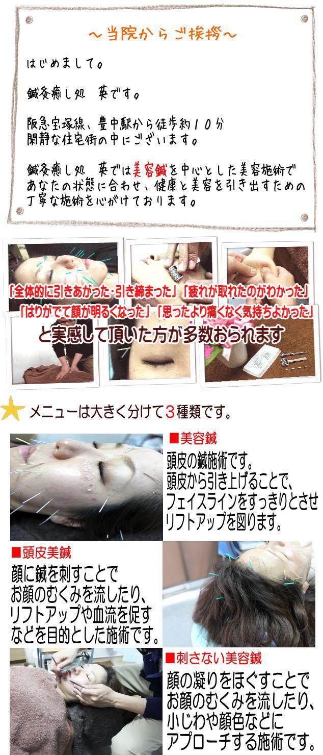 大阪府豊中市の鍼灸癒し処 英 美容鍼の説明